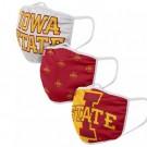 Iowa State Cyclones FOCO Cloth Face Covering Civil Masks 3 Pics